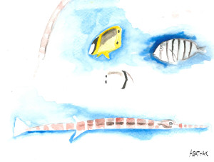 juveniles de poisson